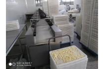供应内蒙奶酪微波烘干灭菌